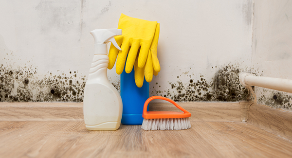 Shockingly Dirty Places You Need To Clean But Don't